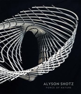 alyson-shotz-force-of-nature.jpg