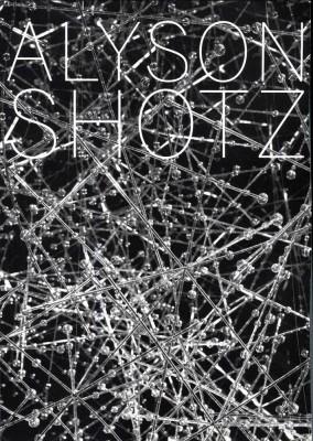 alyson-shotz-phase-shift.jpg