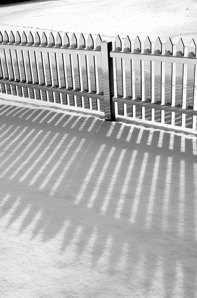 Mirror Fence (6)