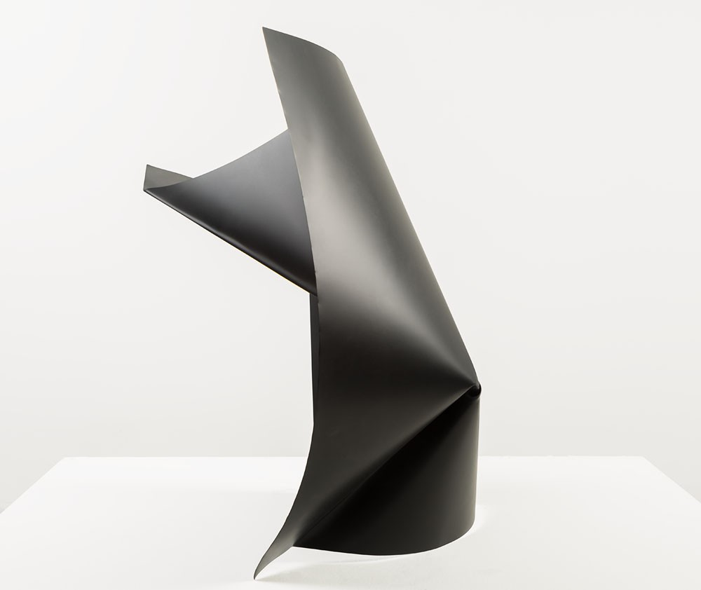Alyson Shotz. Black Folds (1)