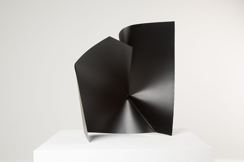 Alyson Shotz. Black Folds
