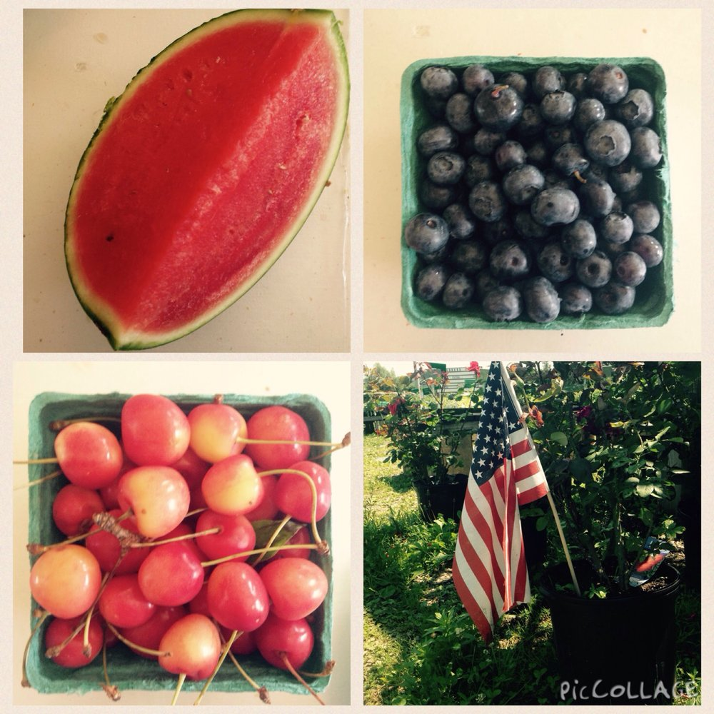 fruit collage.jpg