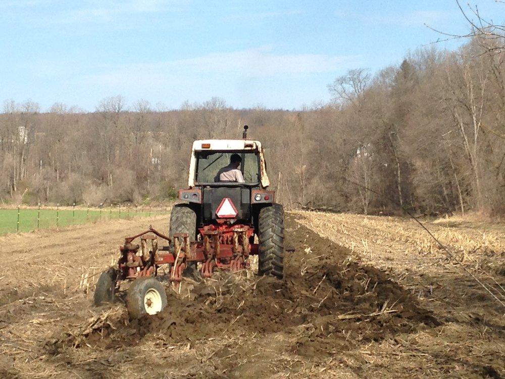 tractors 3.jpg