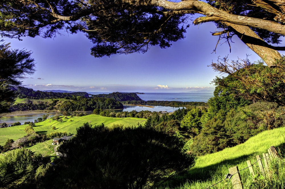 Overlook leading to Orewa Beach, North Island