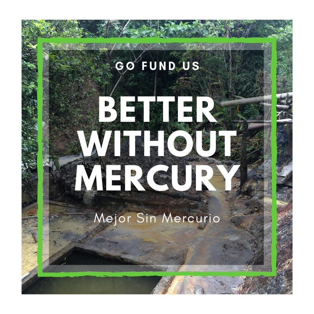 Go Fund US.jpg