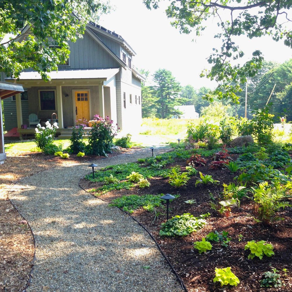 Brunswick woodland pollinator perennial garden