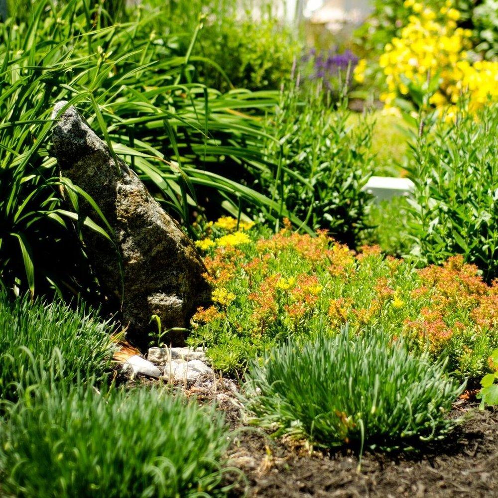 Yarmouth Garden