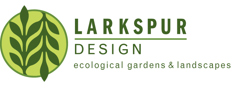 Larkspur Design