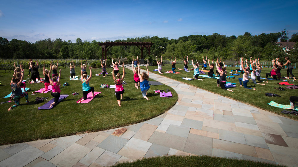 Yoga at Owera Vineyards
