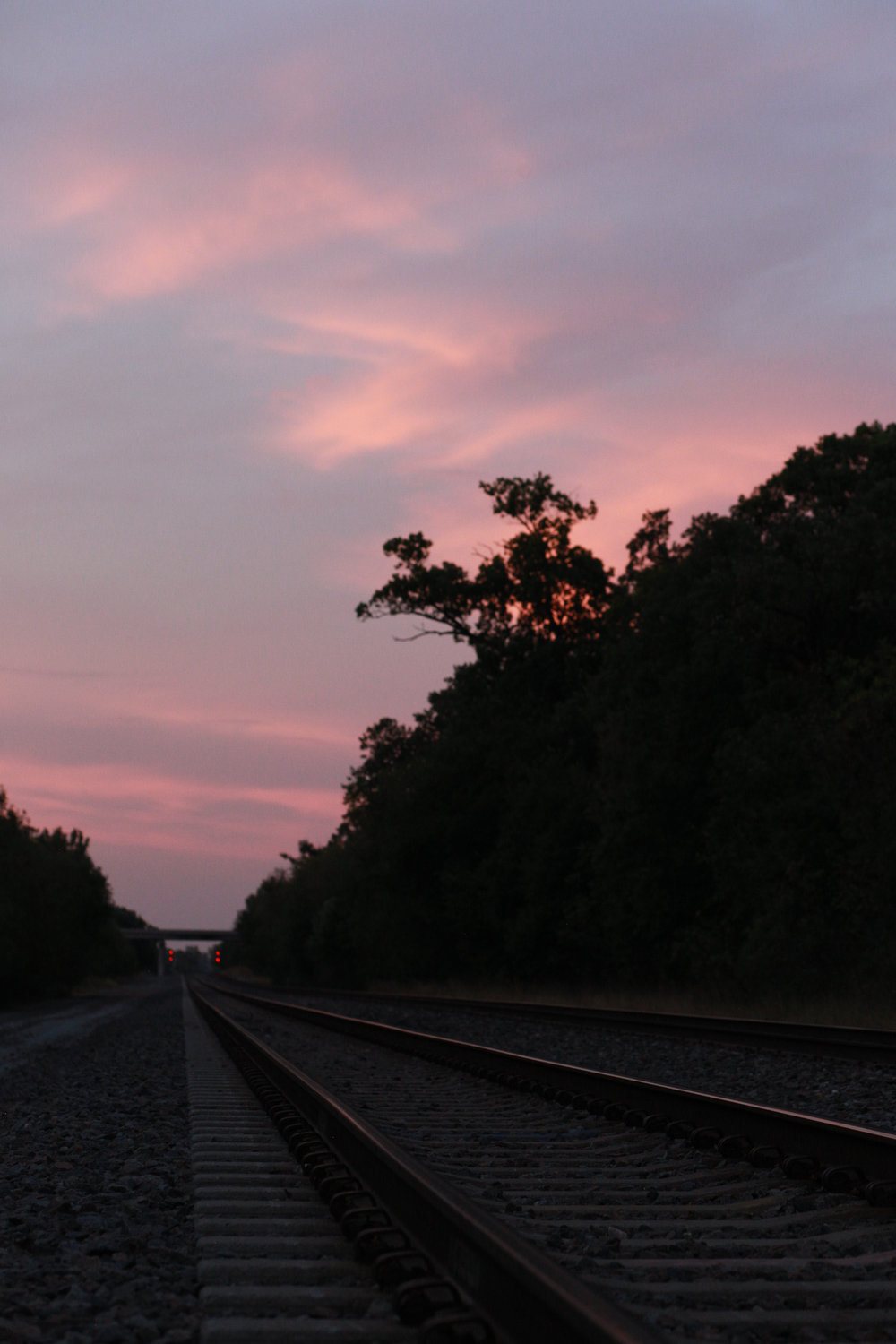 As the BNSF railroad hauls coal and oil south out of town, the park continues to be a peculiar place where humans and nature collide.