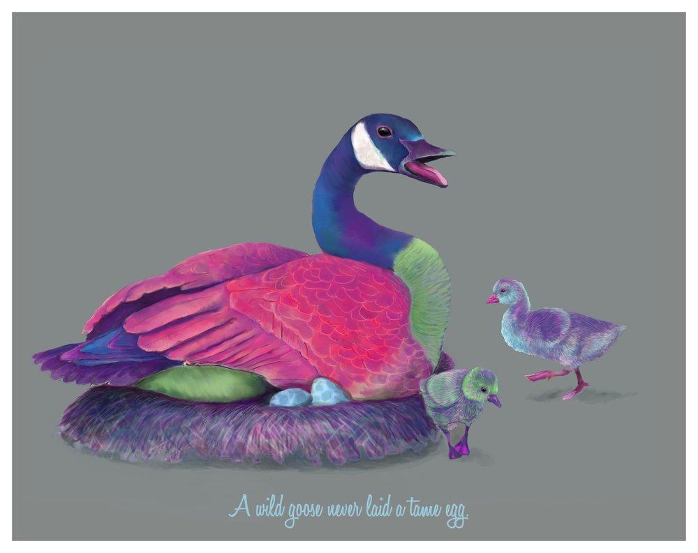 A Wild Goose Never Laid A Tame Egg