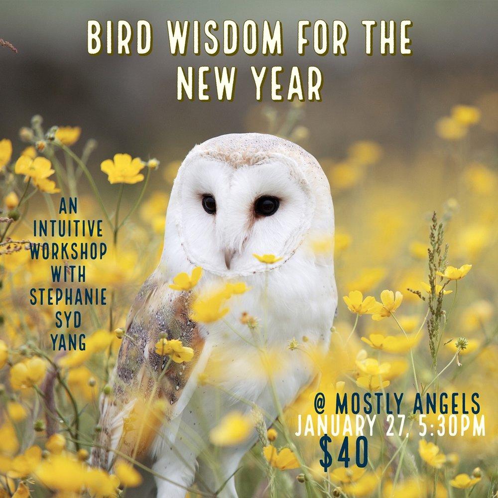 bird wisdom MA flyer.jpg