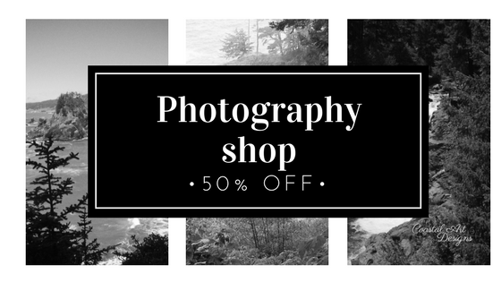 Photography shop.png