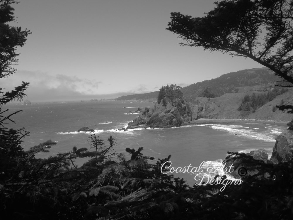 Black-and-white-coastal-oregon-photography copy.jpg