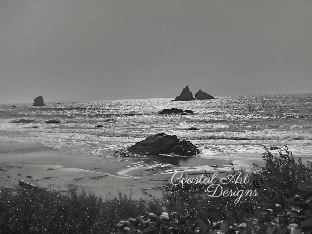 Brookings-coast-oregon-black-and-white-photography.jpg