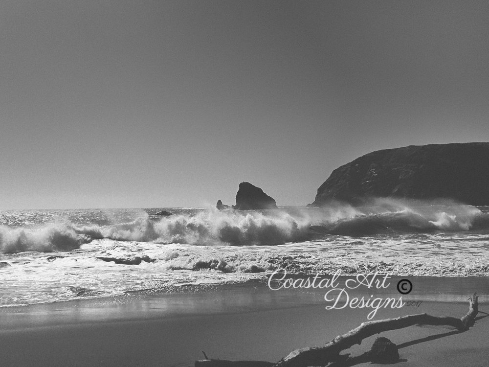oregon-coastal-photography-black-and-white.jpg