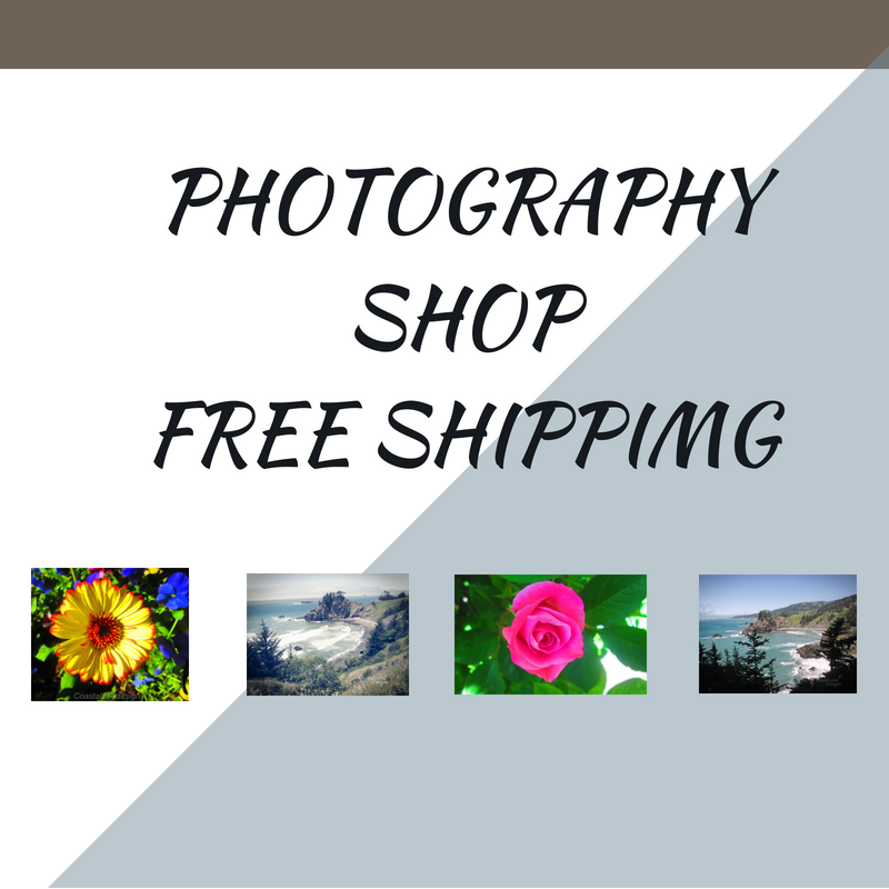 PHOTOGRAPHY SHOP (1).png
