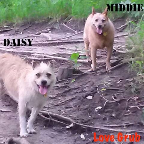 Daisy and Middie.jpg