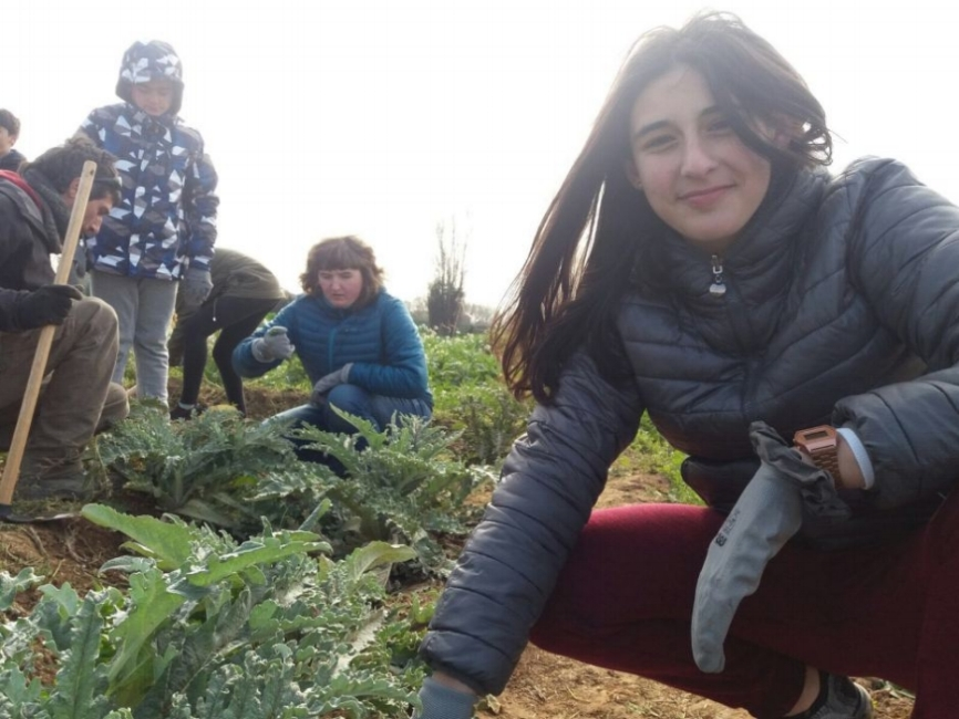 After studying urban farms, students in Barcelona visited a local artichoke farm created on an abandoned lot. As a next step, they will launch their own food-related community action project.