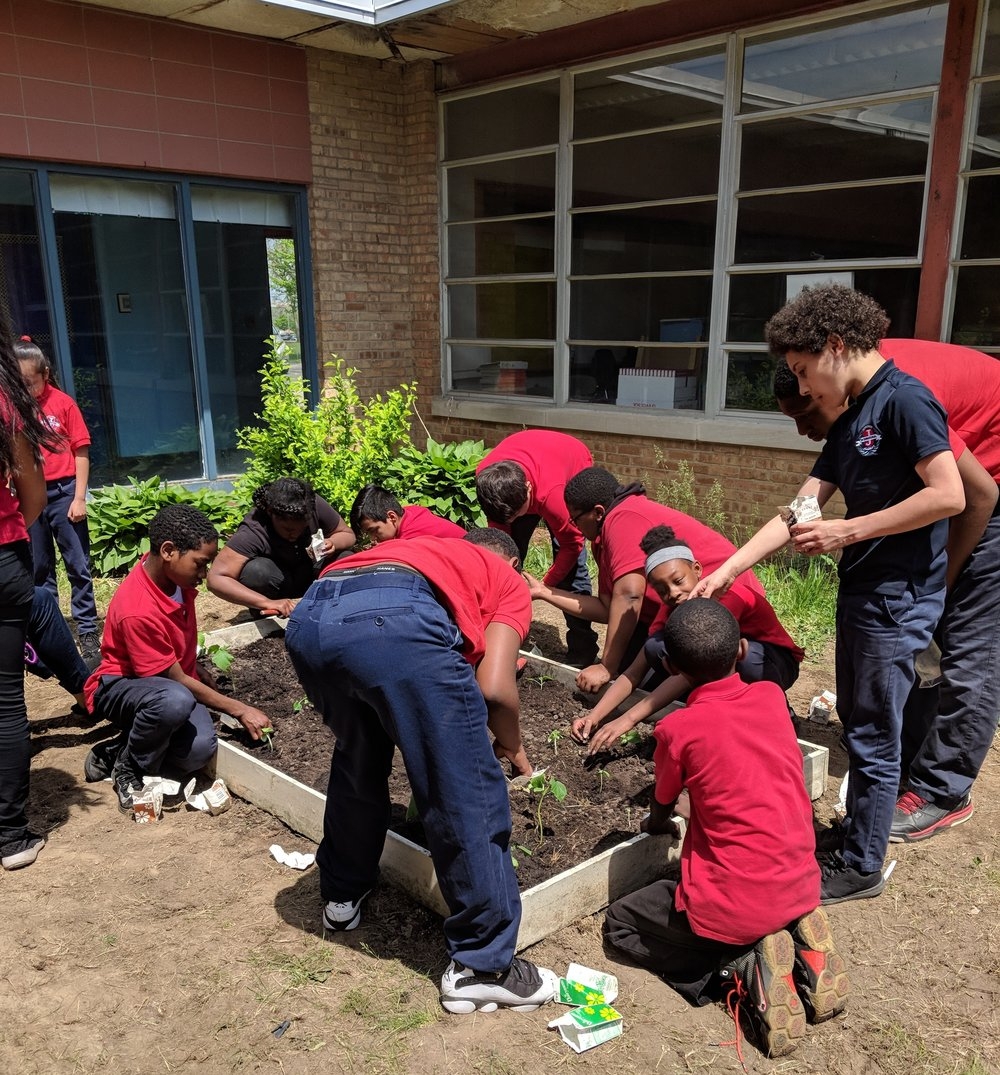 Detroit Global Scholars turned a school courtyard into a garden, applying global lessons locally.