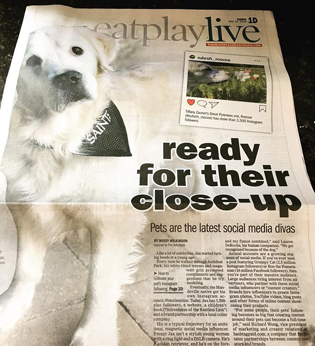 Proud to be featured in today's issue of @theneworleansadvocate! Thanks for the great work @nowlistenmissy! 🦁📰 #restlesslion #frontpagelion . . . #sassylion #maplemansion #goldenretriever #goldensofinstagram #goldensofig #goldensofinsta #goldensofinstaworld #topdogphoto #dogsofig #dogsofinstagram #retreiveroftheday #ilovegolden_retrievers #retrieversgram #noladogs #nolanewsgram #slpets #goldenpupsquadfeature #nolapets