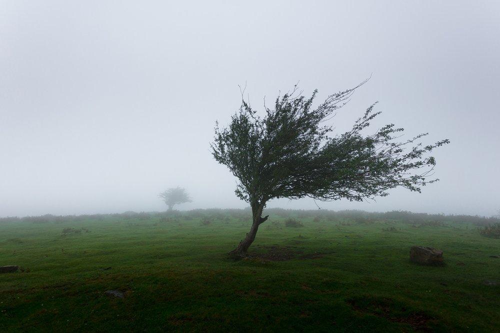 Glas Eireann wind