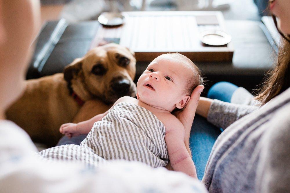 180430-Seibold Newborn-50_Blog.jpg