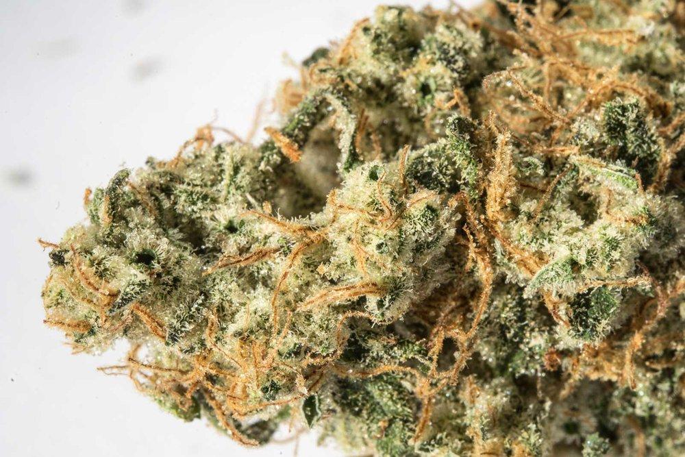 weed-3.jpg