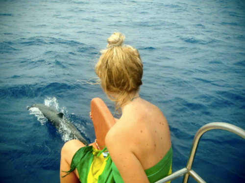Watching dolphins play off the coast of Brazil
