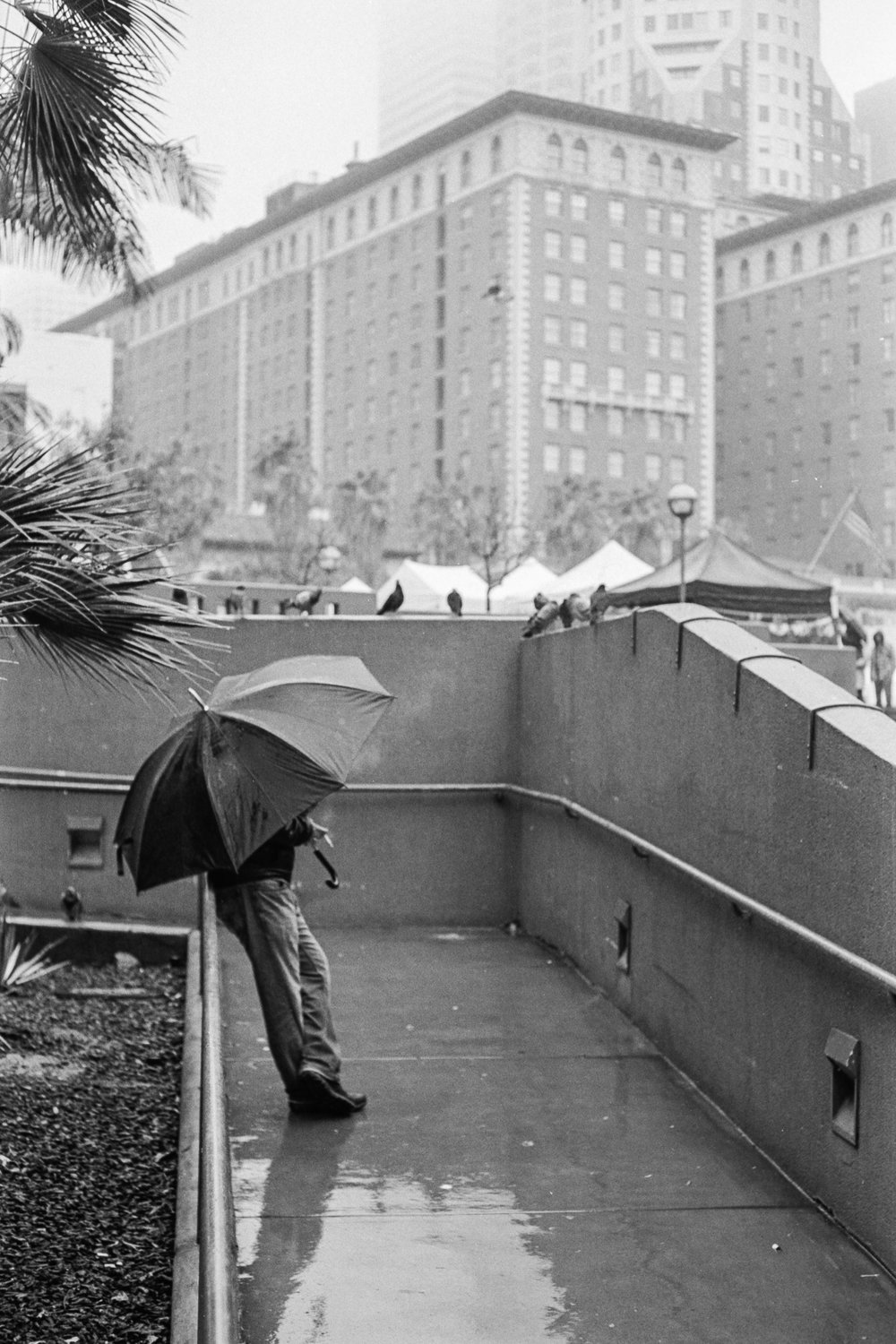 Pershing Square, Los Angeles, 2019.