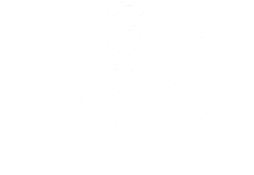 Kommando Forces Network