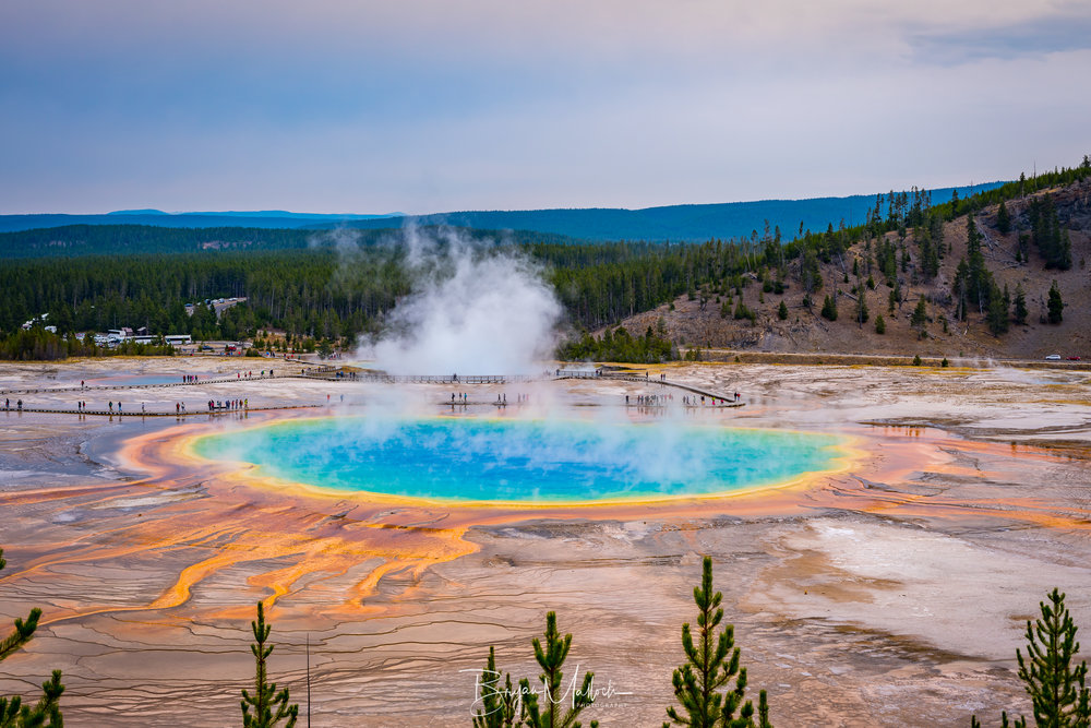 The Grand Prismatic hot spring as seen from the lookout