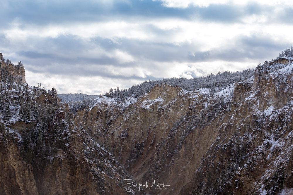 Canyon view above the Yellowstone River