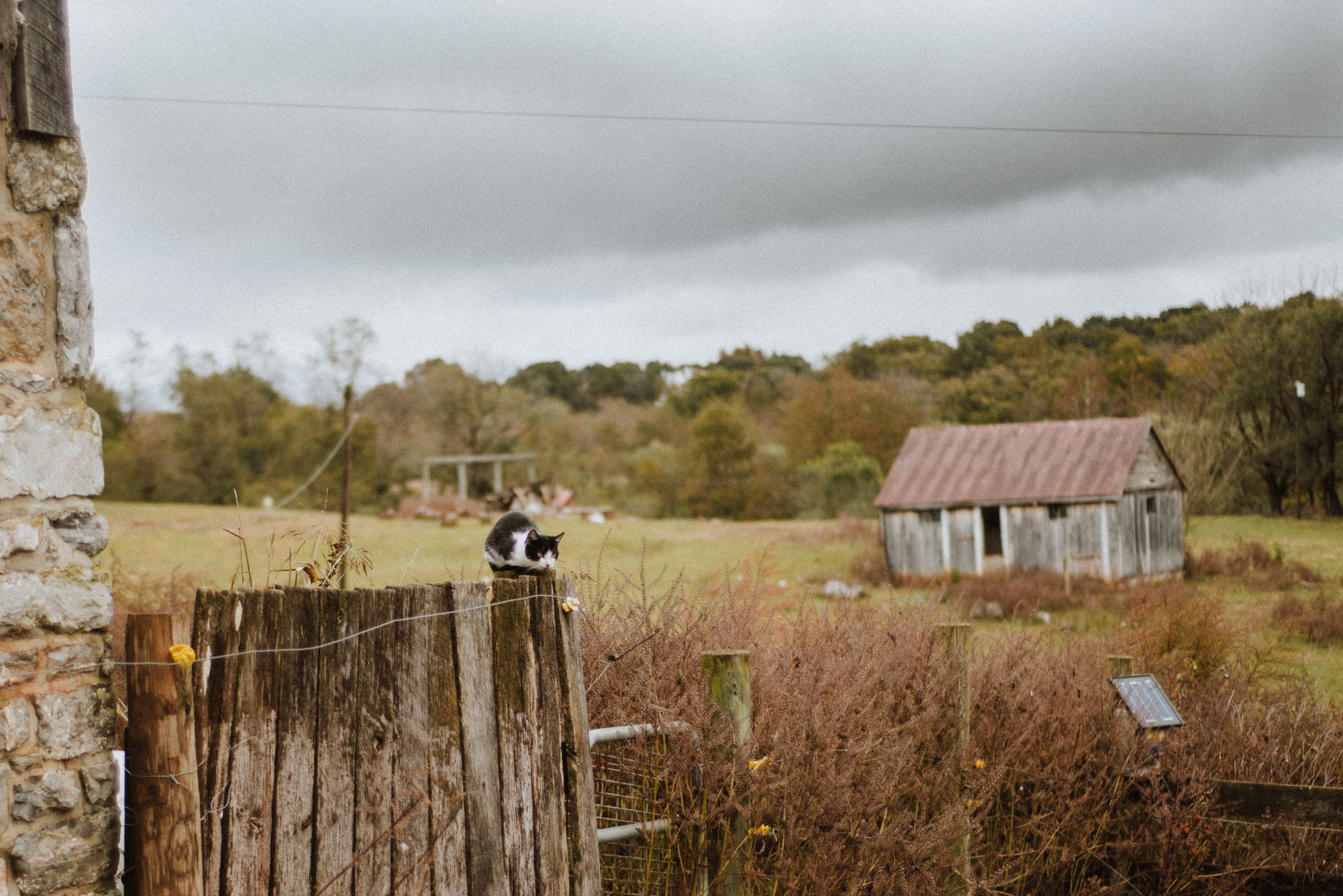 ApkePhotography_Tricia+Mike_WestVirginiaWedding_Farm_7.jpg