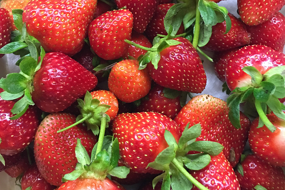 strawberries for front page food.jpg