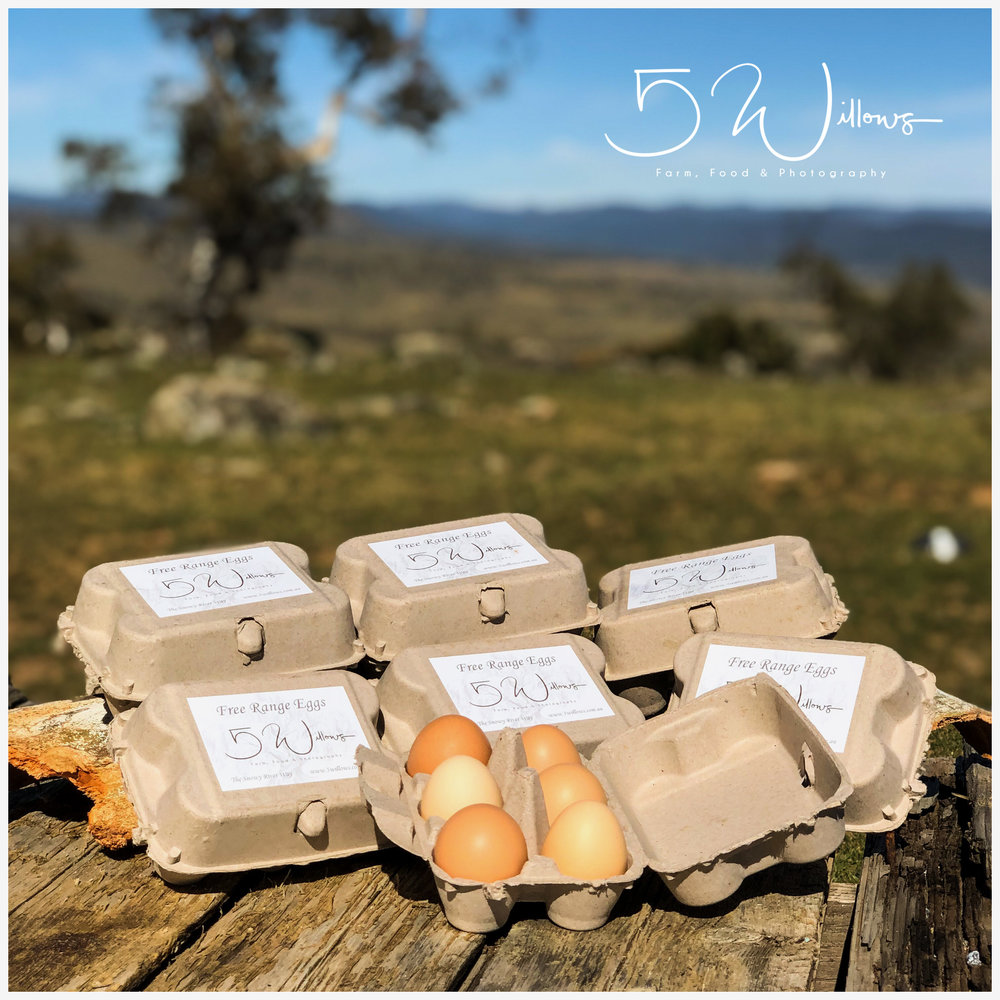 Free Range Farm Eggs - Farm Fresh Eggs - limited supply available - $5 per dozenPlease GET IN TOUCH to place your order.We collect our eggs 2-3 times per day and they are generally only a few days old when sold. All our chickens are free range and fed a combination of fresh foods, scratch mix, corn, and layer pellets.