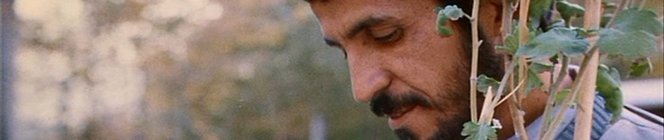 close-up-hossain-sabzian.png