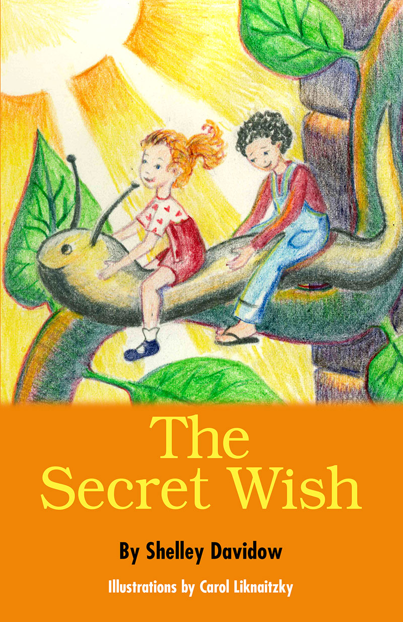 The-Secret-Wish-Front-JPG-Corrected-(1).jpg
