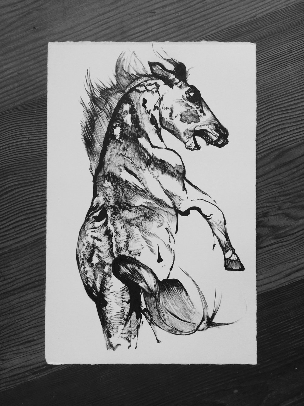 ink on paper  approximately 6 x 11 inches