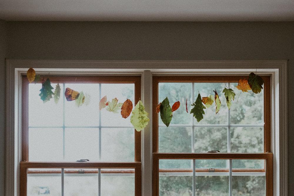 leaves_blog-7.jpg