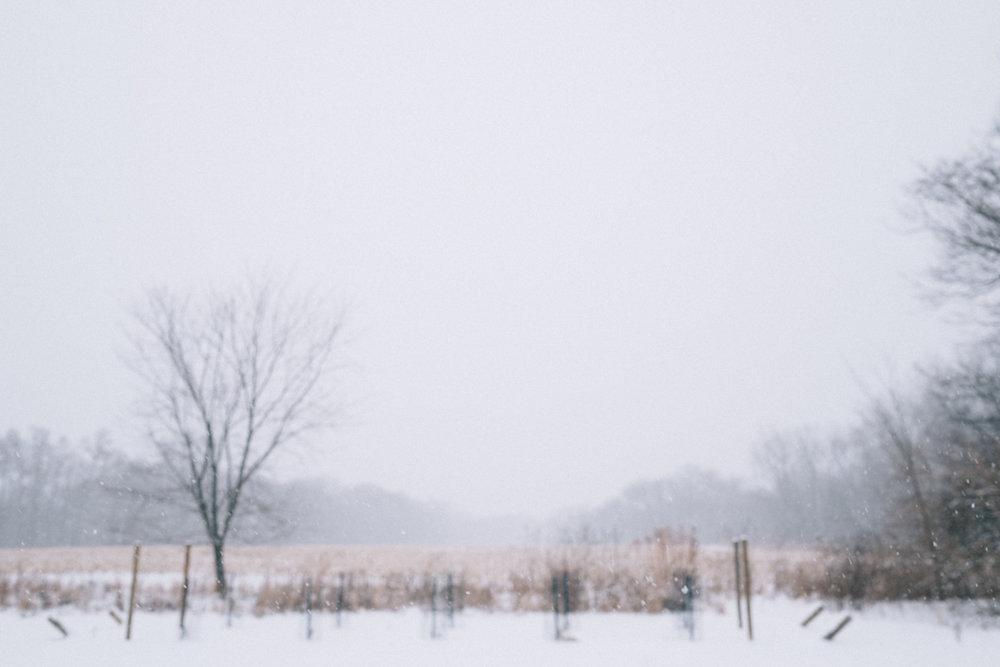 xmas eve snow-8.jpg