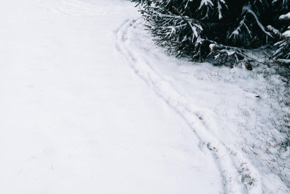 xmas eve snow-20.jpg