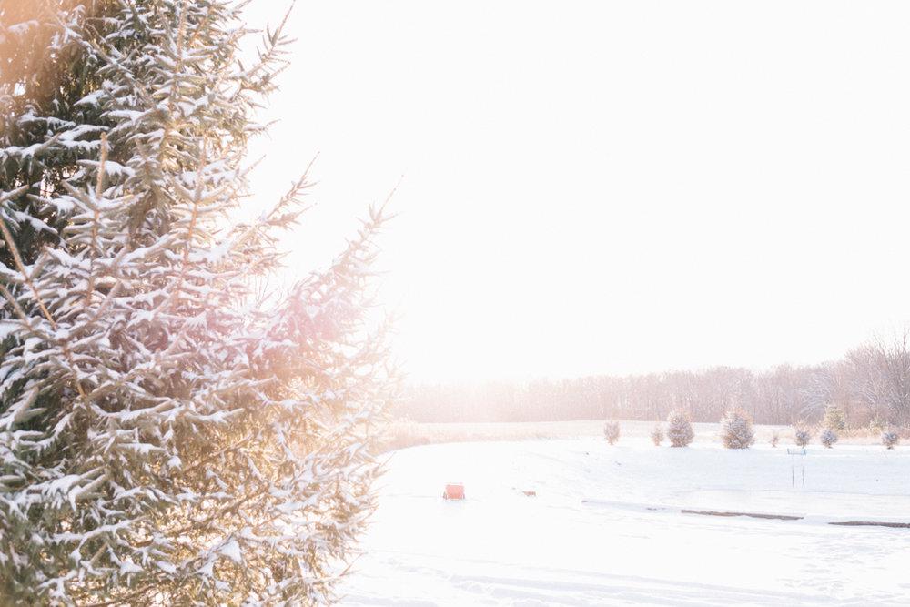 xmas eve snow-30.jpg