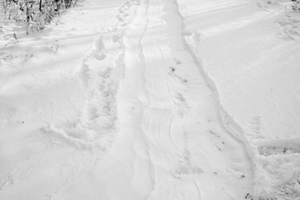 xmas eve snow-32.jpg