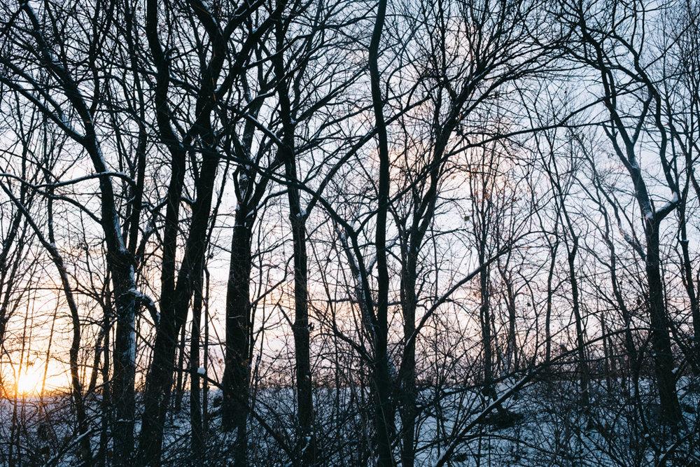 xmas eve snow-44.jpg