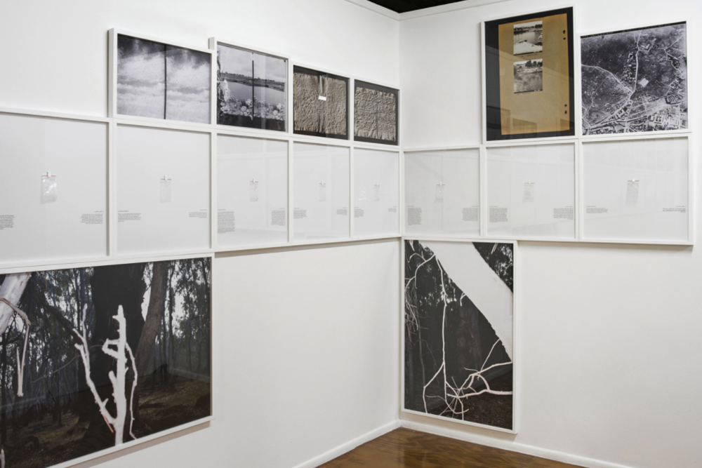 - Tom Nicholson (Aust.)Comparative Monument (Ma'Man Allah), 2014Frieze of 62 found archival photographs; 69 Eucalyptus camaldulensis seeds, collected from 69 Eucalyptus trees in the Ma'man Allah cemetery, Jerusalem; 69 bilingual texts, each framed; 7 photographs from Barmah Forest, Victoria; photography: Christian Capurro; total work 3567 × 230 cm.Exh.:Comparative Monument (Ma'Man Allah), solo show at Milani Gallery, Brisbane, 4 — 27 September, 2014.http://www.tomn.net/projects/2014_02/