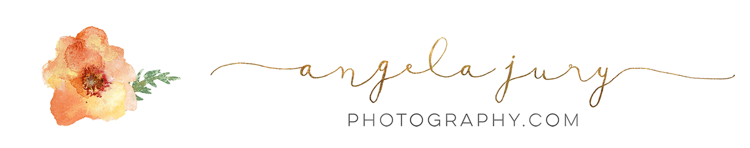 Best newborn photographer Auckland | Newborn Photographers Auckland | Auckland Newborn Photographer