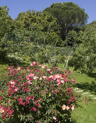 Villa del Sole - Sleeps: 8-10Price From: EUR 8,500 per weekLocation: Porto ErcoleFeatures: Pool