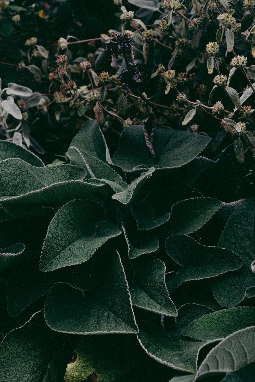 untitled-165.jpg