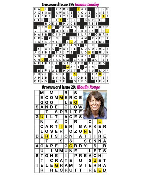 29Puzzles.jpg